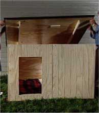 11 build a dog house with free plans,Dog House Plans With Hinged Roof