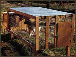 Above Ground Kennel