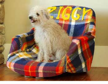 Footstool Dog Bed