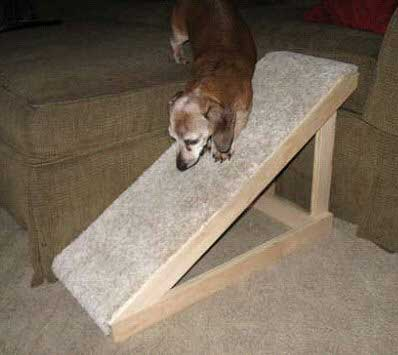 Free dog ramp Plan