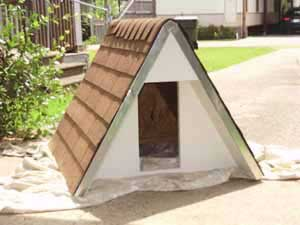 Inexpensive Dog House