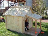 Removable Roof Dog House